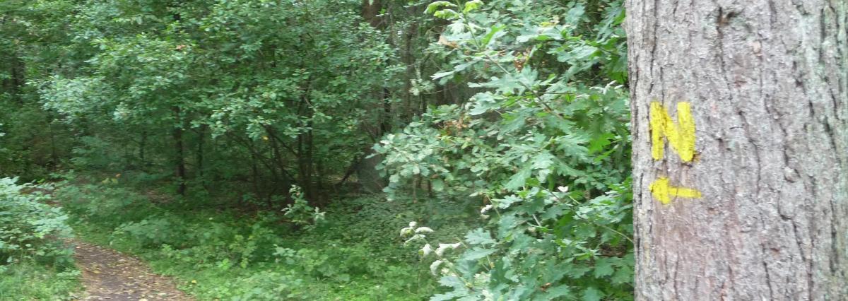 Naturist Trail/Path Undeloh